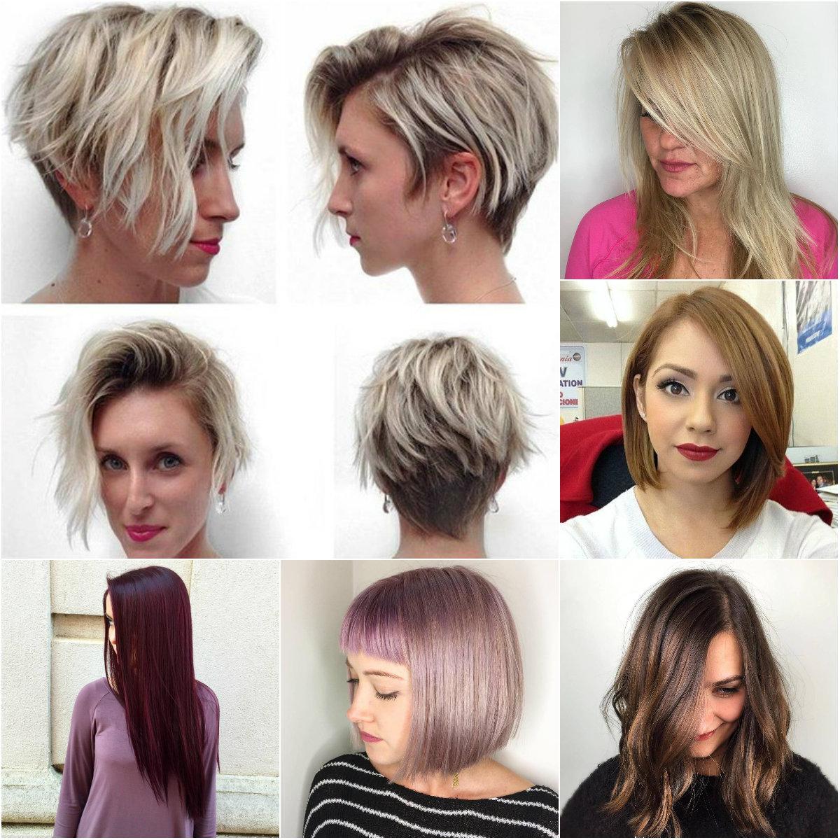 стрижки для редких волос фото 2