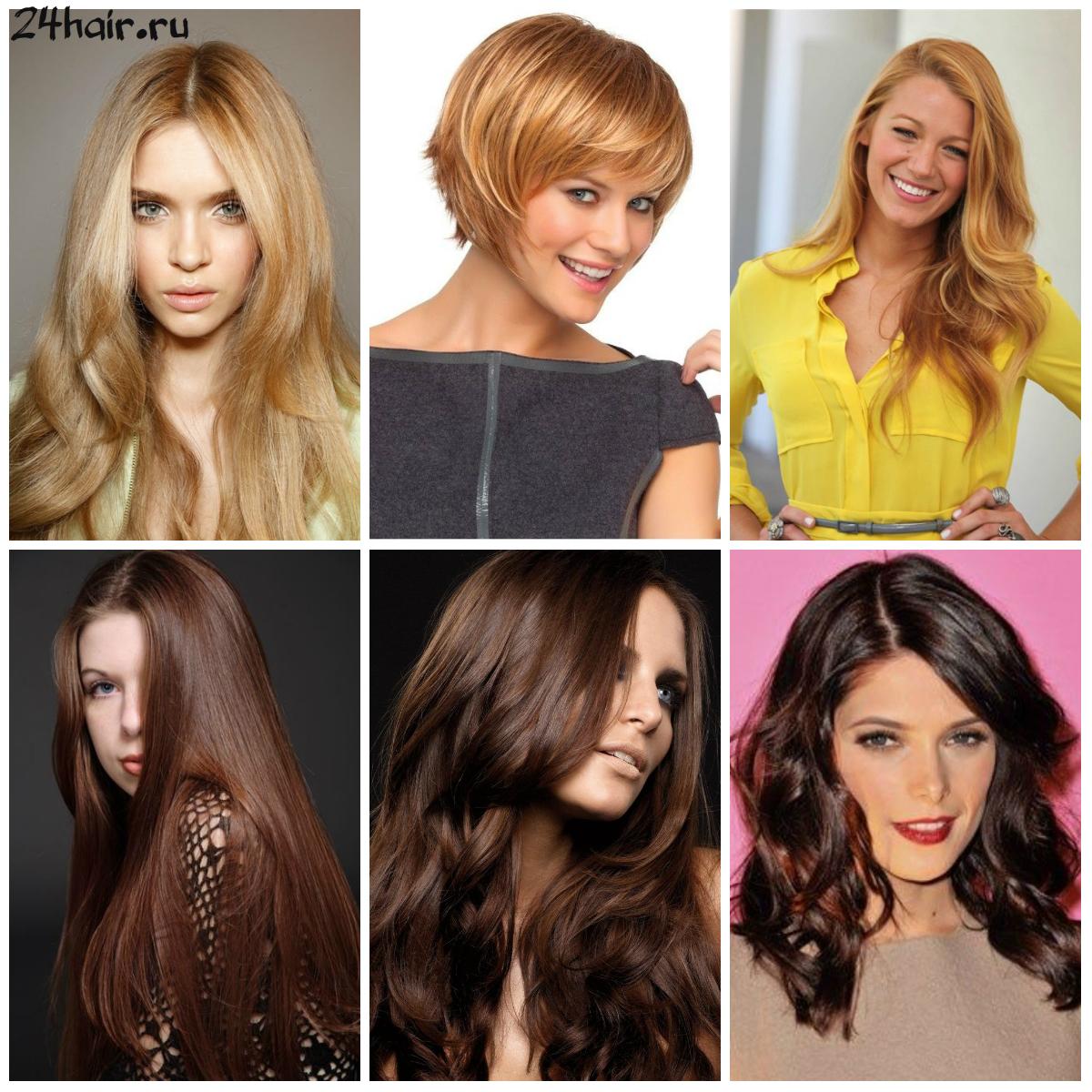 золотой и шоколадный оттенки волос